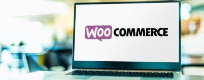 Wordpress įskiepiai elektroninei prekybai